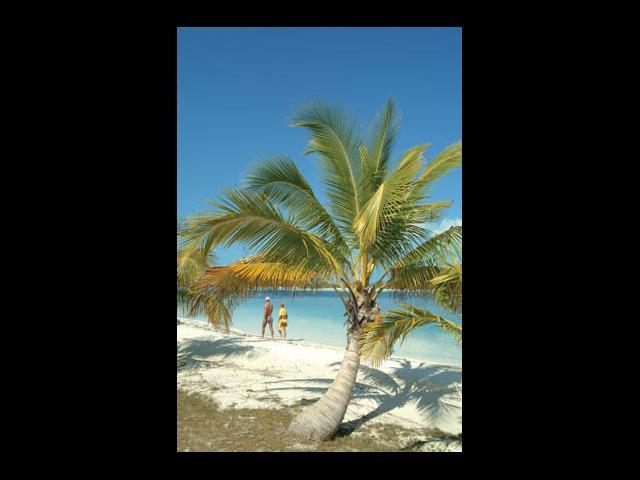 Cayo Largo - tropical beach cayo largo