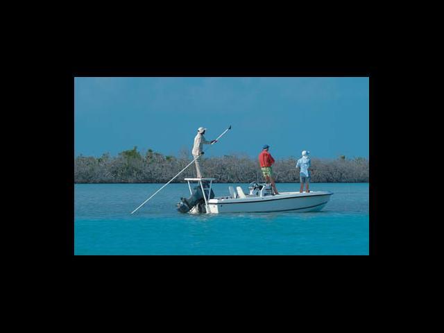 Cayo Largo - fishing in cayo largo