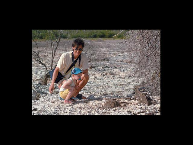Cayo Largo - cayo iguana