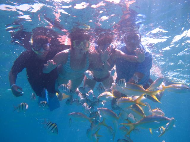 Varadero Beach - snorkeling varadero 2