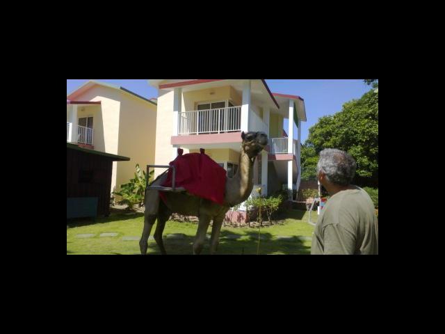 Varadero Beach - Iberostar tainos bungalows